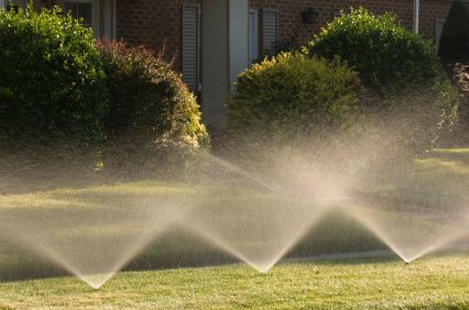 Sprinkler activation - water spraying from sprinklers and watering grass and landscape